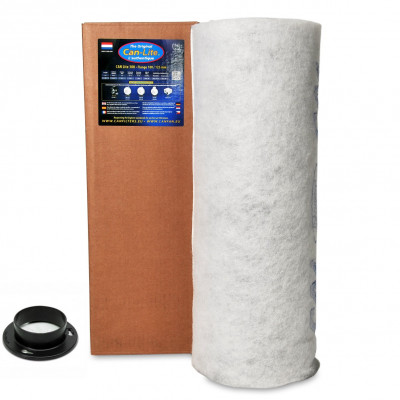 Active Carbon Filter CAN 100