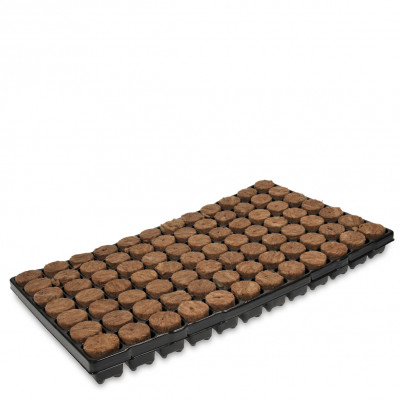 Rockwool Seedbed Tray - 84 Units